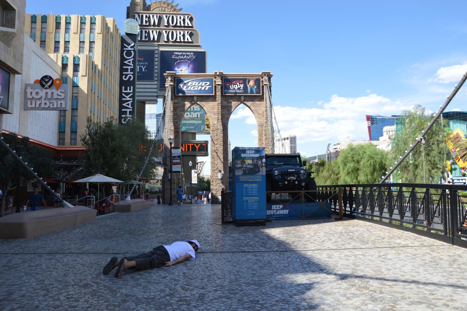 Carballo tumbado en el mini Brooklyn Bridge