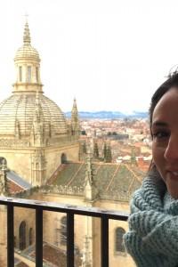 Segovia a vista de pájaro
