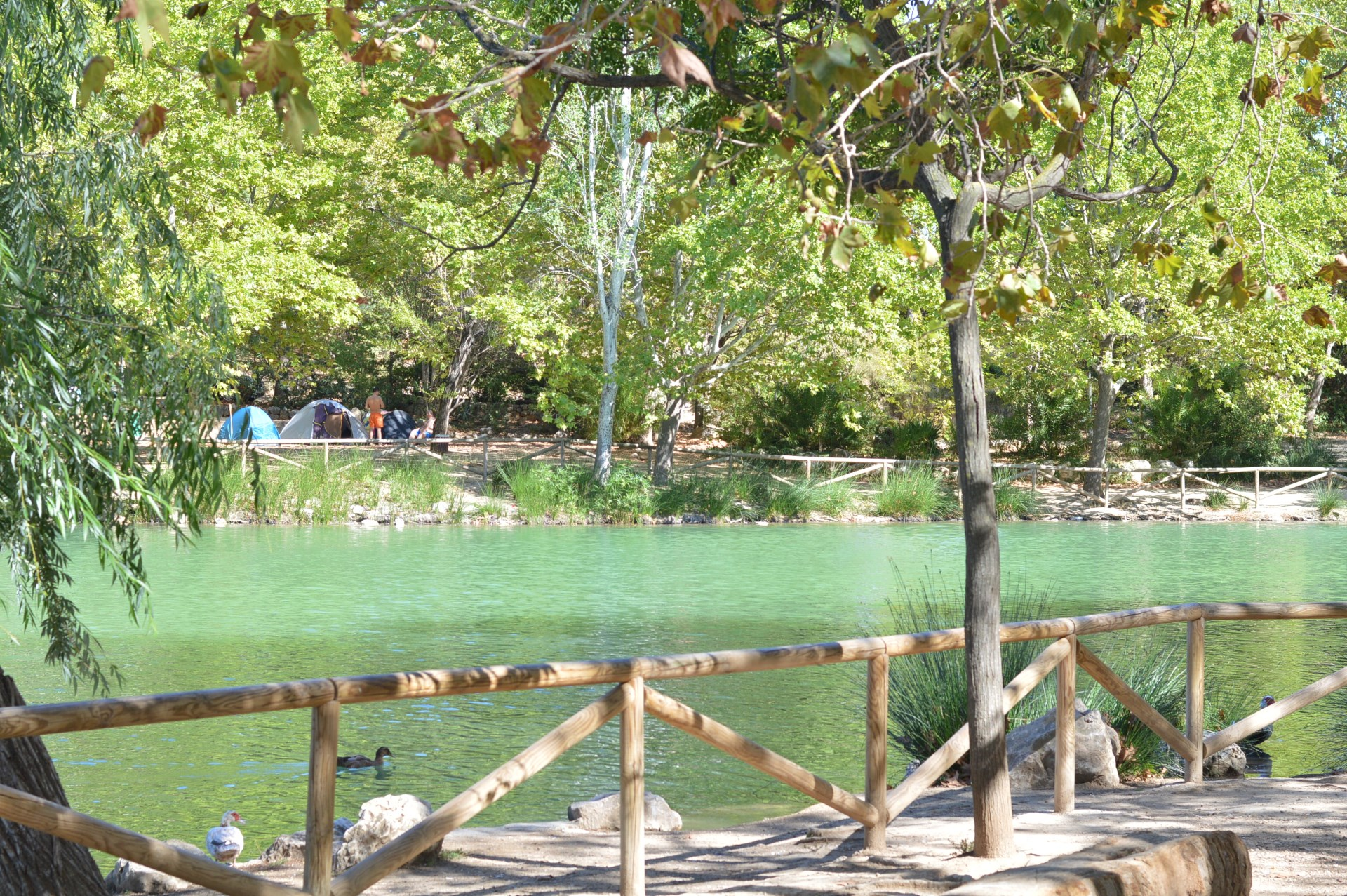 albufera de anna lago