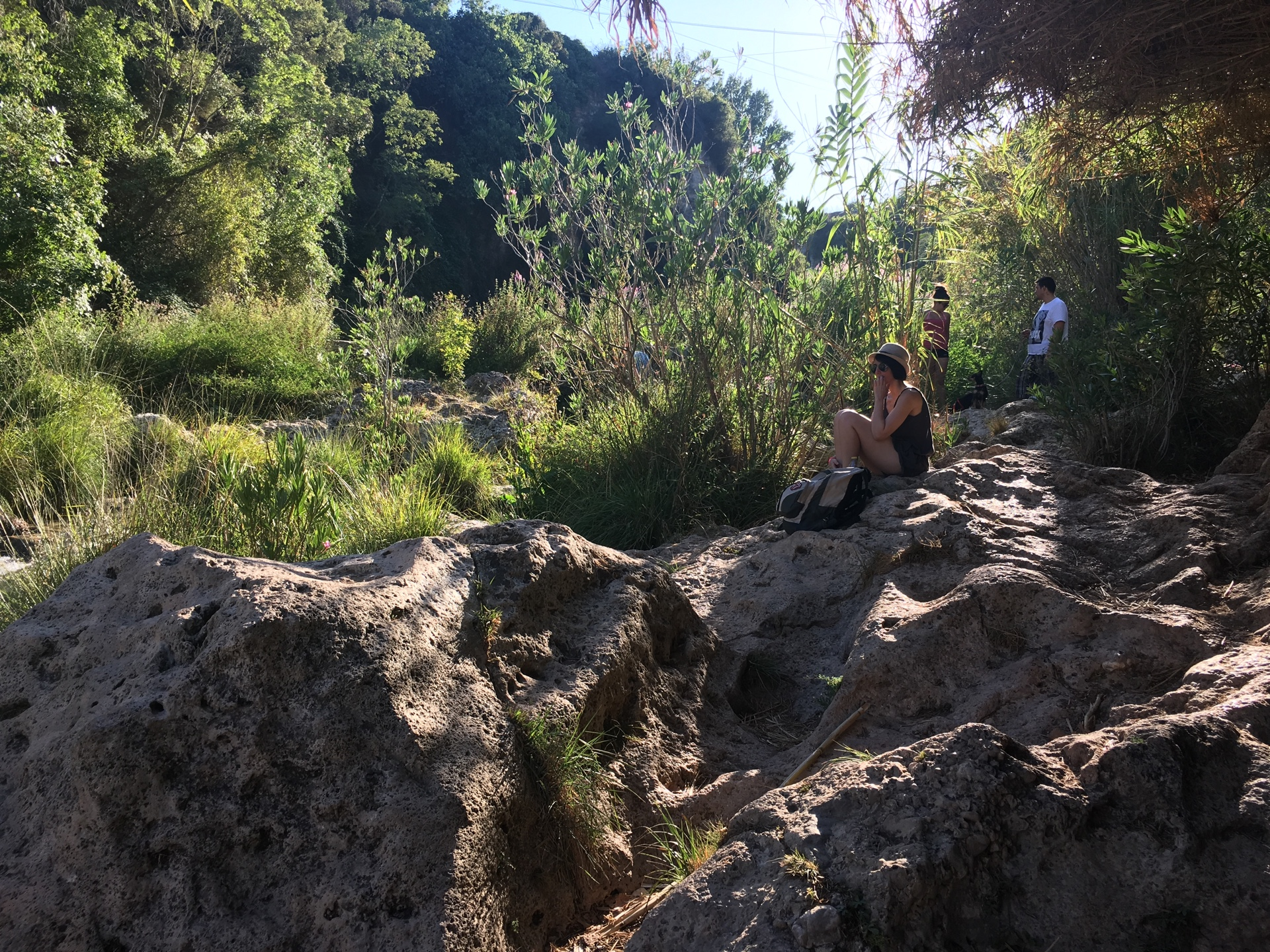 gorgo de la escalera anna vegetacion